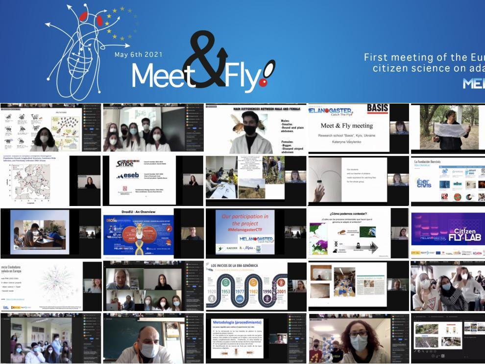 Estudiantes y docentes de doce institutos de España, uno de Alemania y dos de Ucrania se dieron cita virtual en Meet&Fly