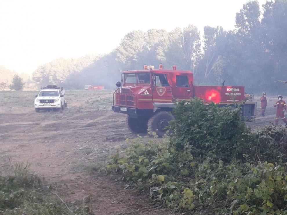 Incendio forestal en una zona de chalés en Tarazona