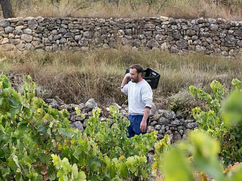 Jordi Solá trabaja viñedos, además de regentar a tienda.