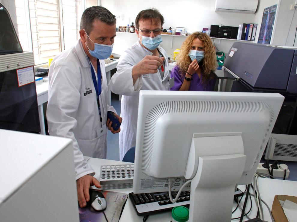 """Desarrollan un nuevo test de """"extrema"""" sensibilidad capaz de detectar anticuerpos contra la covid-19 hasta ahora invisibles"""