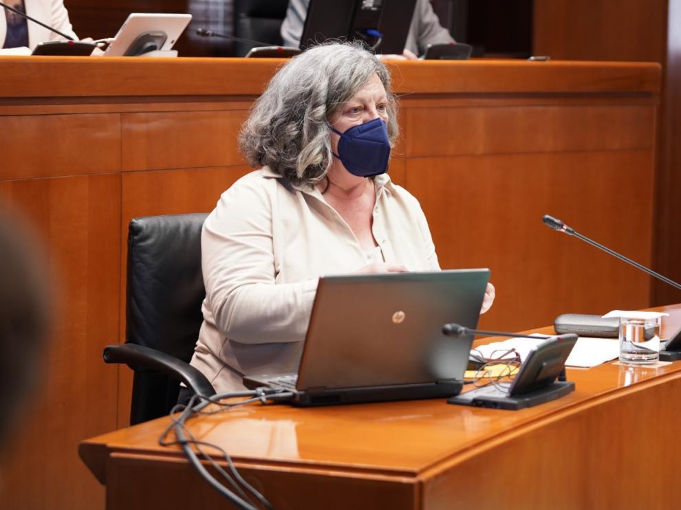 La directora general de Justicia, María Ángeles Júlvez, ha comparecido este lunes ante la comisión Institucional de las Cortes para dar cuenta de los procedimientos de las cláusulas suelo.