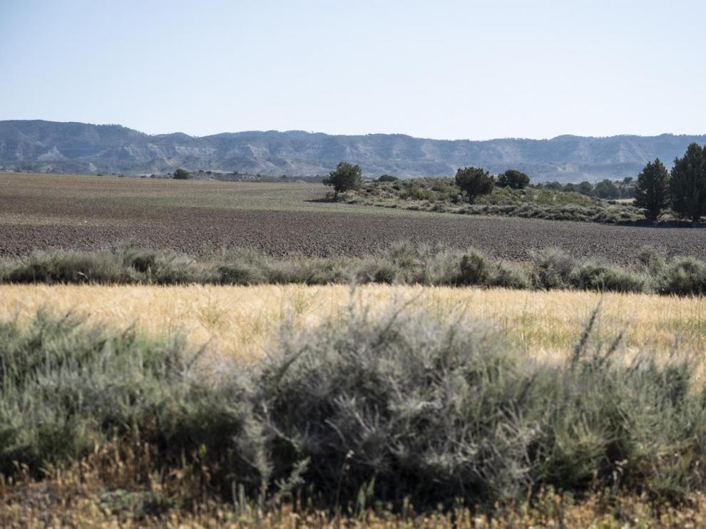 El parque nacional abarcaría 29.000 hectáreas de las comarcas de Monegros, Ribera Baja del Ebro y Comarca Central.