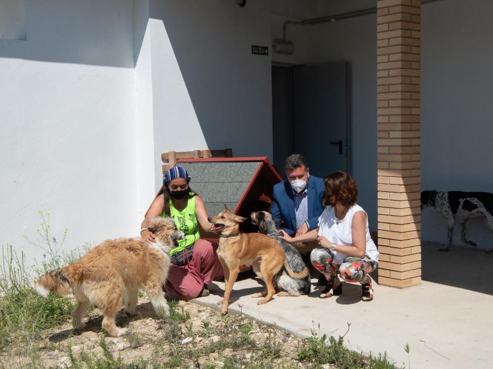 Nuevo refugio de animales del ayuntamiento de Teruel /2021-06-07/ Fotos: Jorge Escudero[[[FOTOGRAFOS]]]