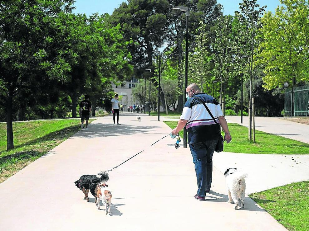 Un hombre pasea junto a sus tres perros en el parque de Torre Ramona, en Las Fuentes.