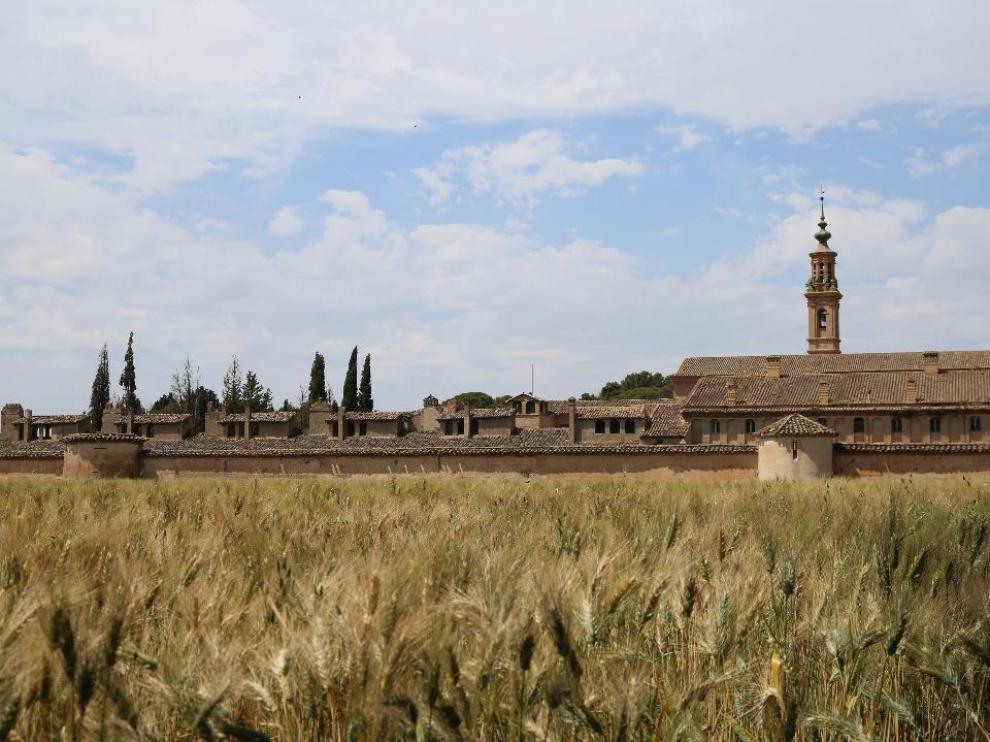 Los trigales de Peñaflor, cerca de la Cartuja de Aula Dei.