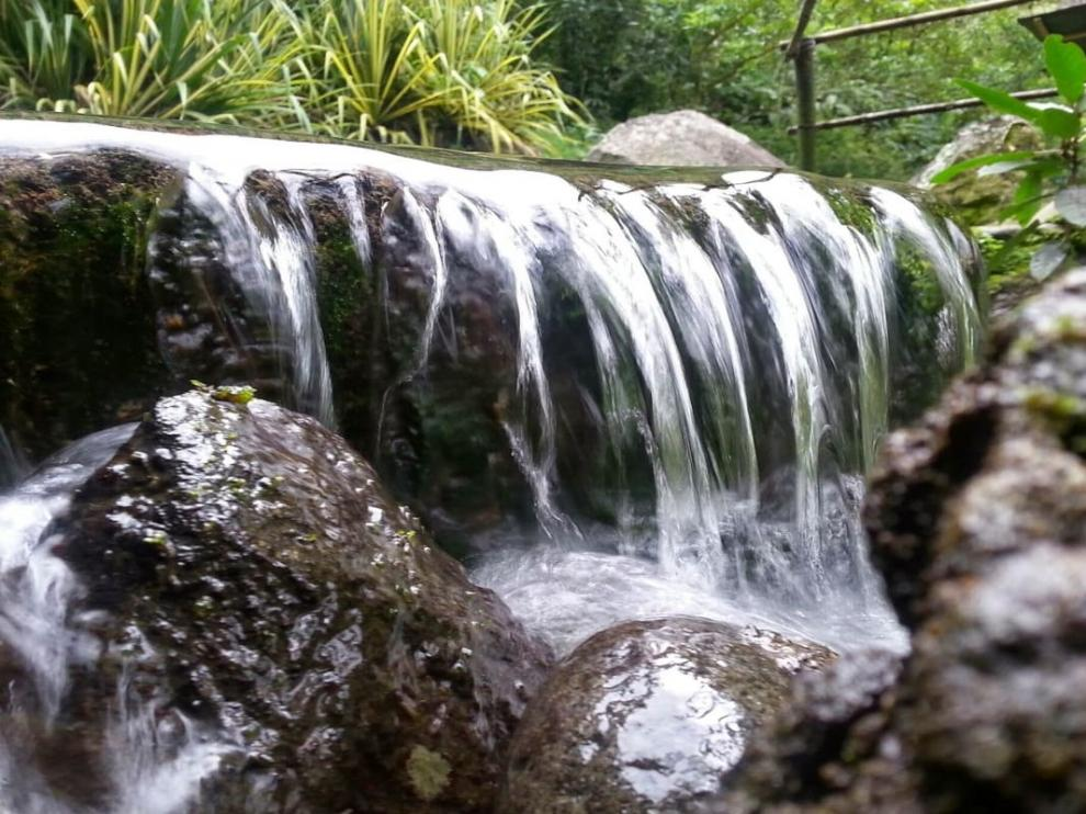 Agua de un arroyo.