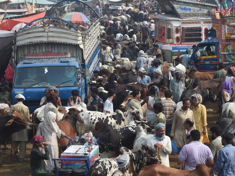 Preparaciones de la Fiesta del Sacrifico o Eid al Adha esta semana en Pakistán.