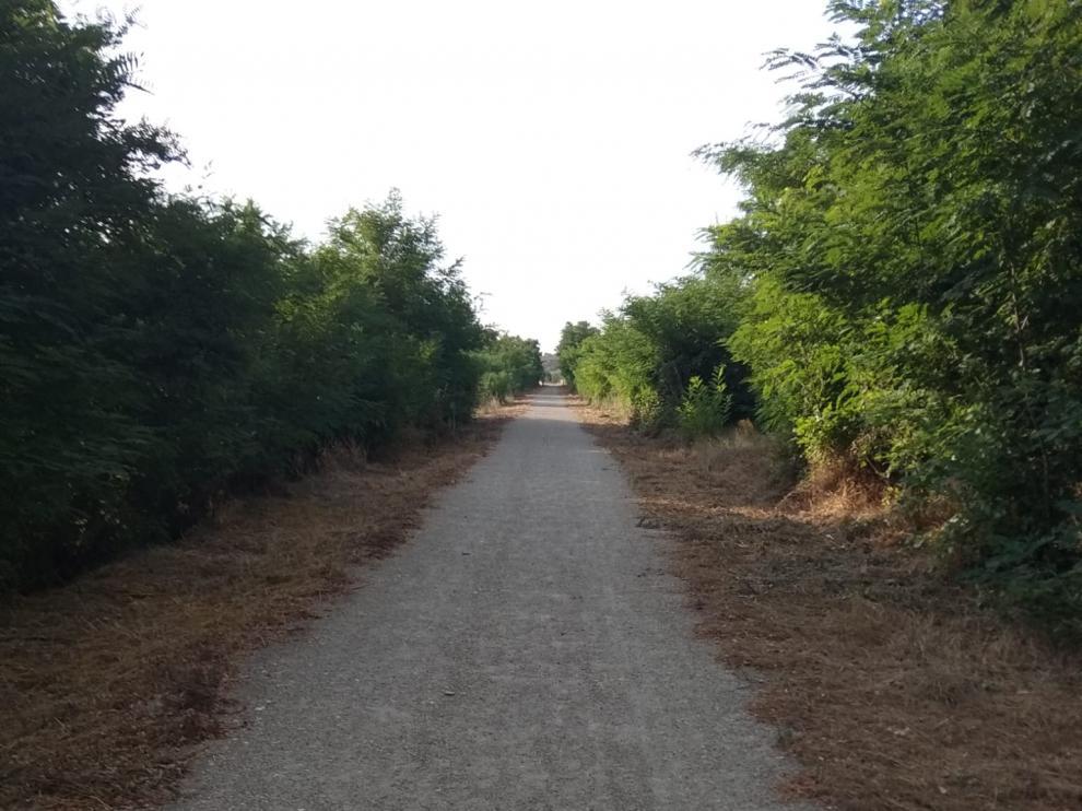 Un tramo ya limpio del camino natural Santander-Mediterráneo a su paso por la comarca darocense.
