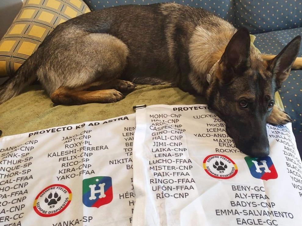 Las banderas que quieren colocarse en el Aneto con los nombres de los perros.