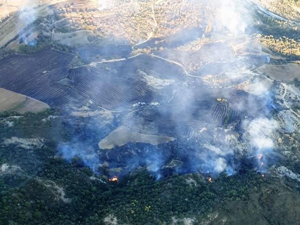 El fuego arrasó campos de cultivos y arbolado.