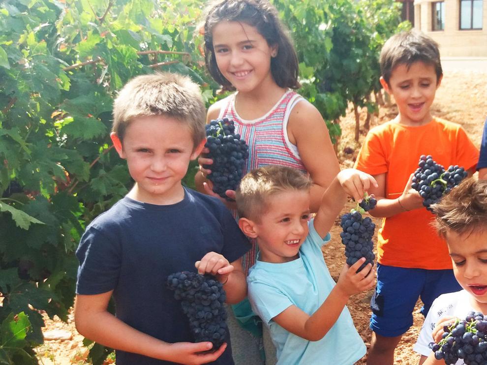 Bodegas Care tiene un Mini Club y los niños pueden ver cómo se vendimia.