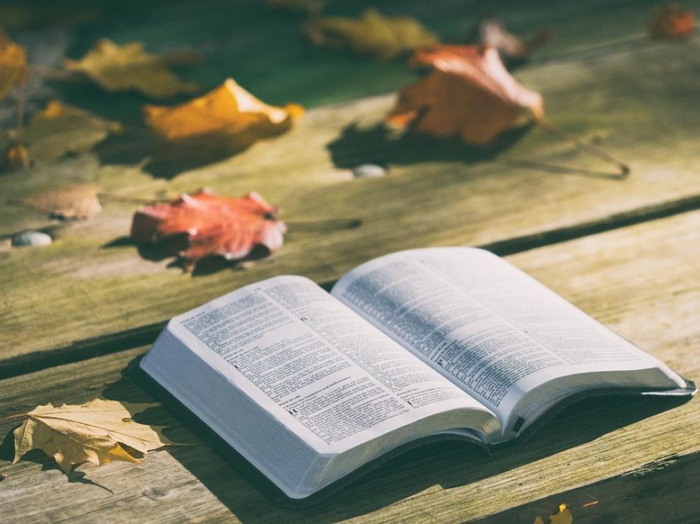 Novedades literarias para este otoño.