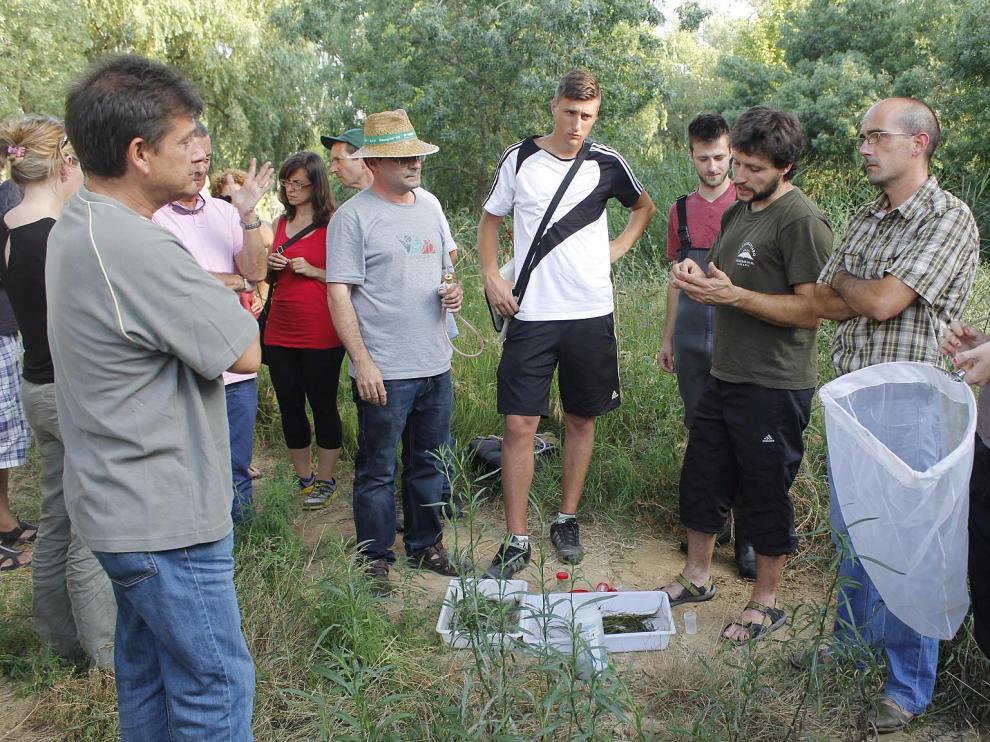 Imagen de archivo del Curso de Entomología en Grañén.
