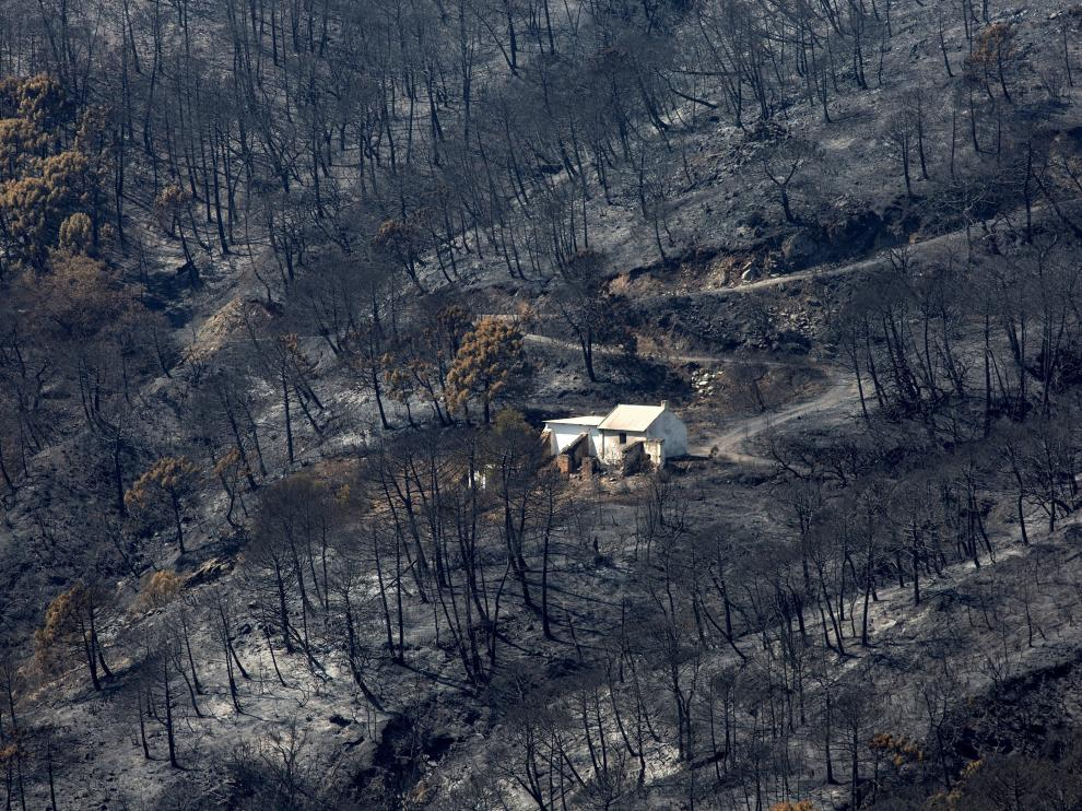 Un millar de desalojados y 3.600 hectáreas quemadas en el incendio de Málaga
