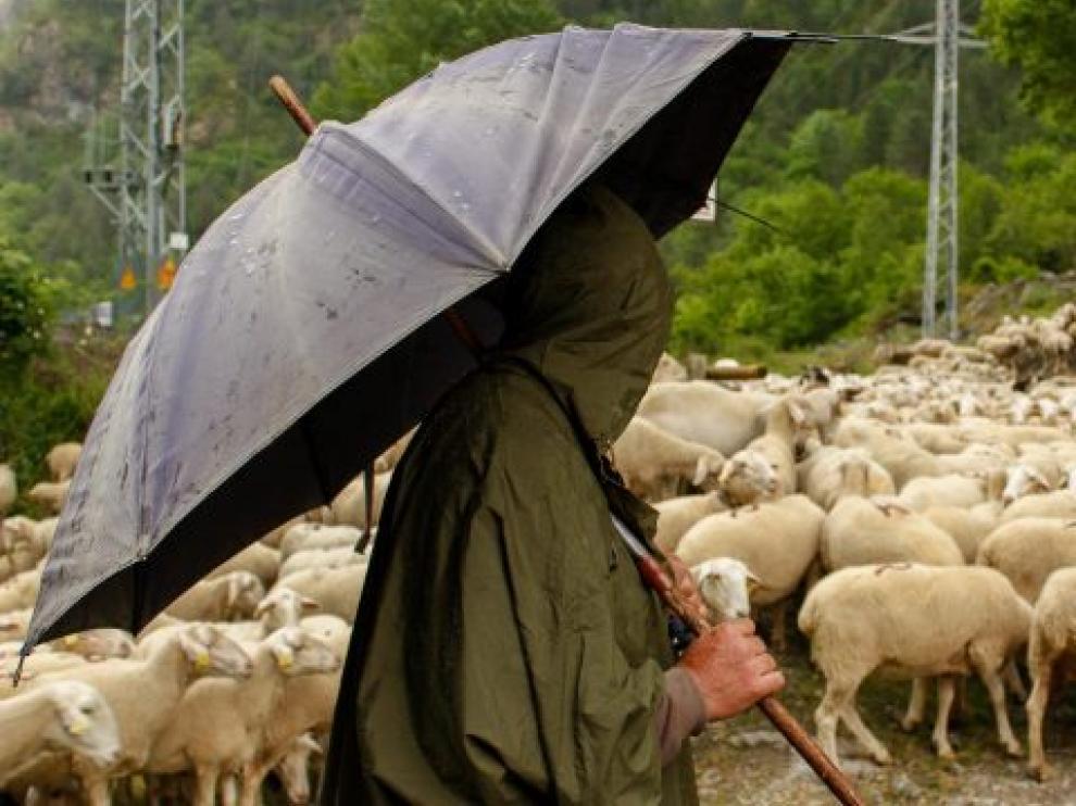 La escuela de pastoreo La Estiva está llevando a cabo un curso inicial con 22 participantes.