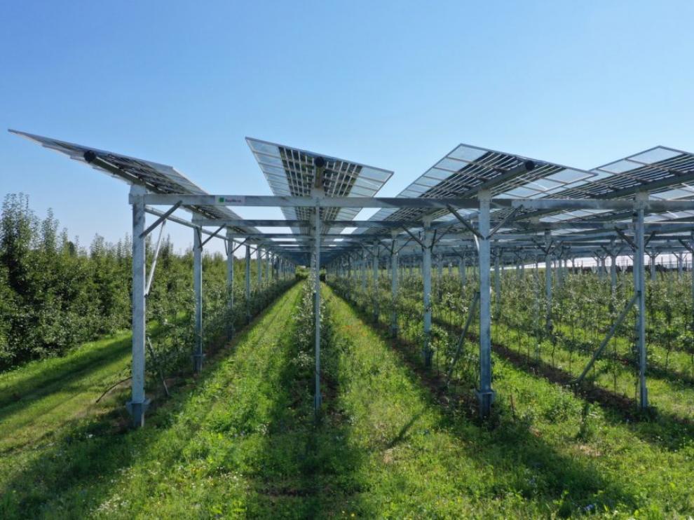 Sistemas agrovoltaicos que combinan cultivos y placas solares.