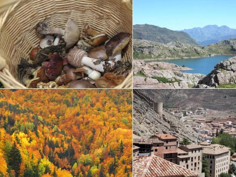 De setas a ibones 5 experiencias para (re)descubrir Aragón en el Puente del Pilar