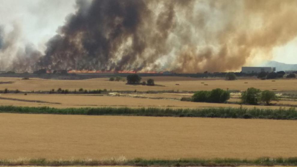 Desalojada la Plataforma Logística de Huesca por la cercanía de un incendio agrícola.