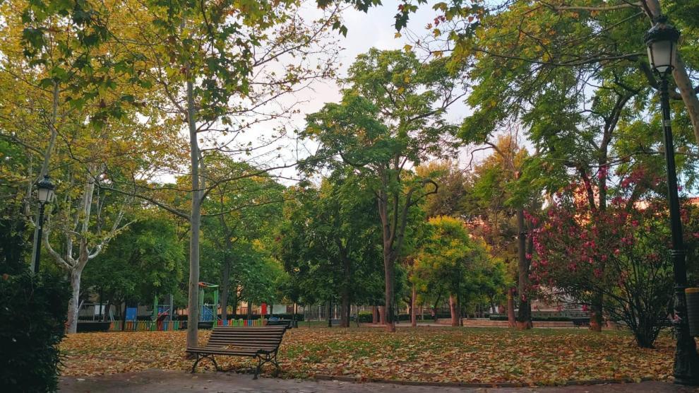 Una imagen de la plaza de Los Sitios, llena de hojas caídas, este martes.