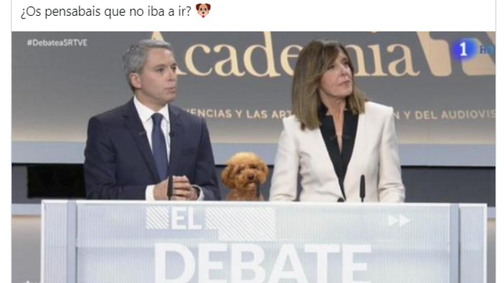 """Polémica en Twitter por un meme del perro Lucas, el """"arma secreta"""" de Rivera en el debate"""