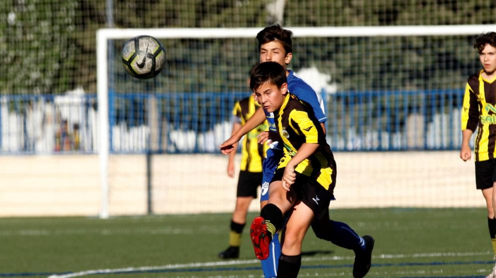 Final. 1ªInfantil B. CD Ebro vs. UD Balsas.