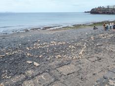 """Un grupo de voluntarios del programa """"Junt@s Somos Biosfera"""" recogiendo las construcciones de rocas en la playa de Las Coloradas"""