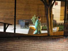 Una trabajadora de la residencia traslada un contenedor de basura tras el cierre.