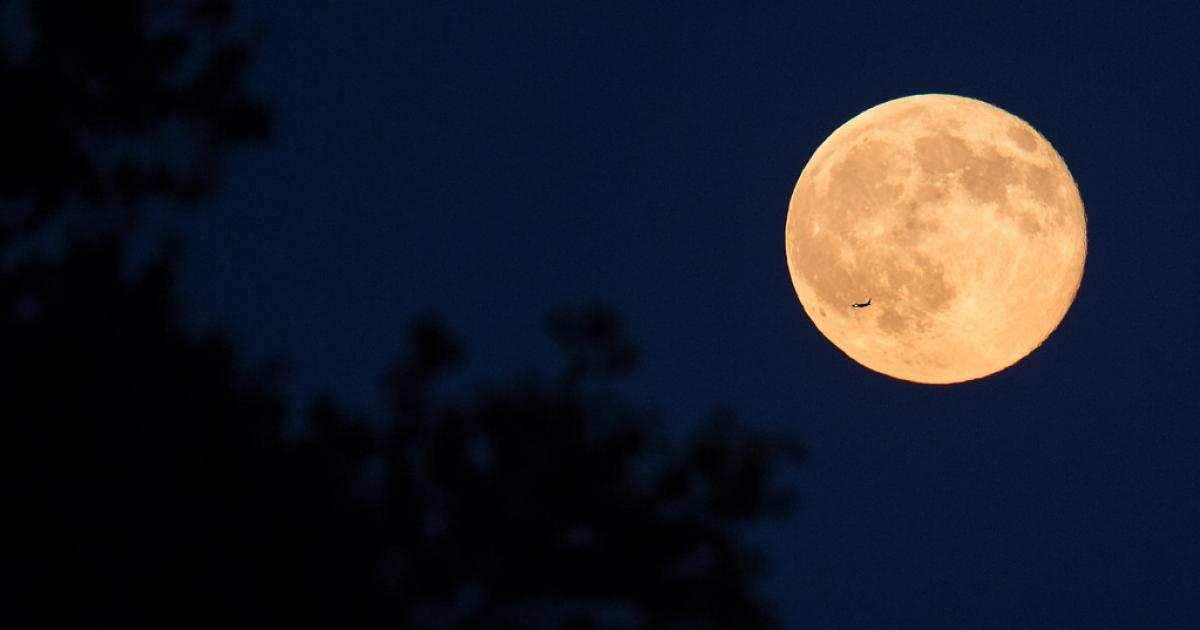 Por qué a veces la Luna se ve amarilla? | Noticias de Sociedad en ...