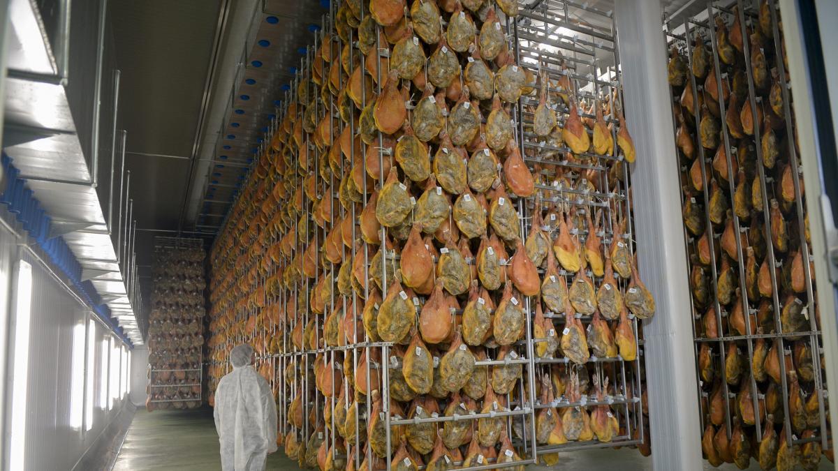 Resultado de imagen de secadero jamones peñarroya de Tastavins