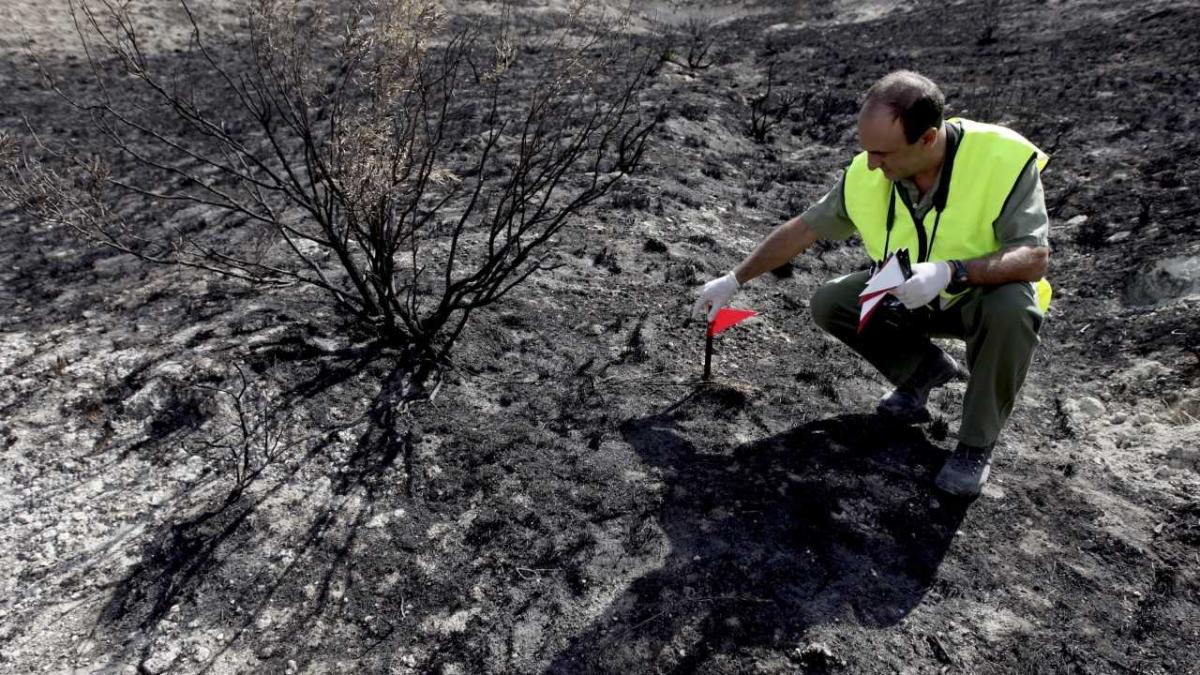 El agente forestal que se atrevió a enfrentarse a la alcaldesa de La Muela